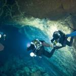 Deep sea dives reveal new ocean species