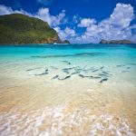 Hit the road: Natural seclusion on Lord Howe Island