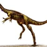 New dinosaur predator discovered