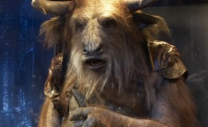 Asterius, the Minotaur helped Prince Caspian and the Pevensie children overthrow King Miraz. Image: Disney/Walden.