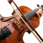 Fungi treatment produces Stradivarius-worthy sounds