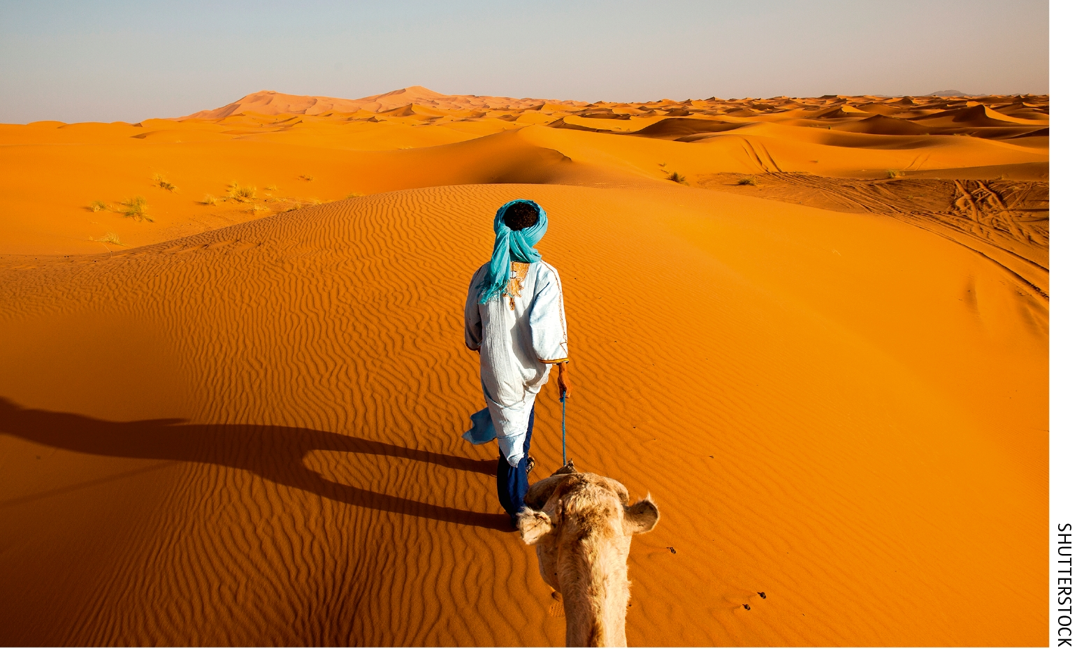 The Sahara Will Be Fertile In 10 000 Years Science
