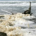 What is beach 'foam'?