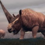Our ancestors hunted a Siberian unicorn