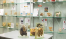 UNSW Sydney launches virtual Museum of Human Disease